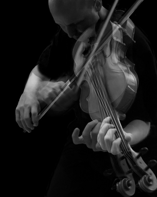 String Chamber Music     Wintergreen Performing Arts Mozingo Music